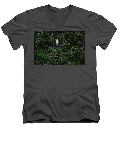 Resting Egret Men's V-Neck T-Shirt by James David Phenicie