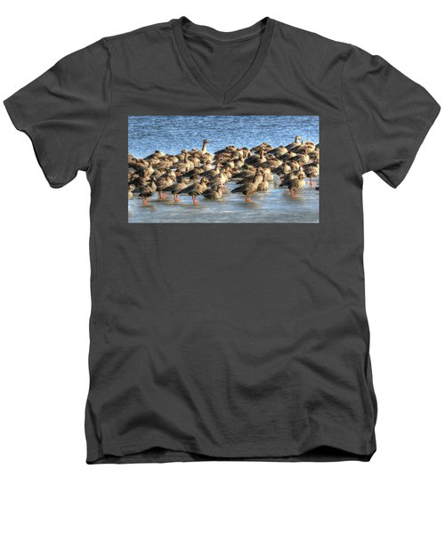 Resting On Iowa Ice Men's V-Neck T-Shirt