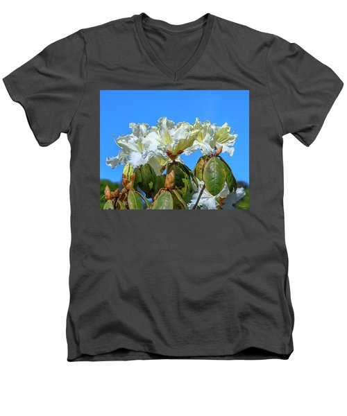 Rhododendron Ciliicalyx Dthn0213 Men's V-Neck T-Shirt