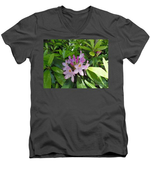 Rhododendron Men's V-Neck T-Shirt by Daun Soden-Greene