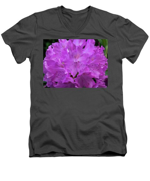 Rhododendron With Stamen And Stigma Men's V-Neck T-Shirt