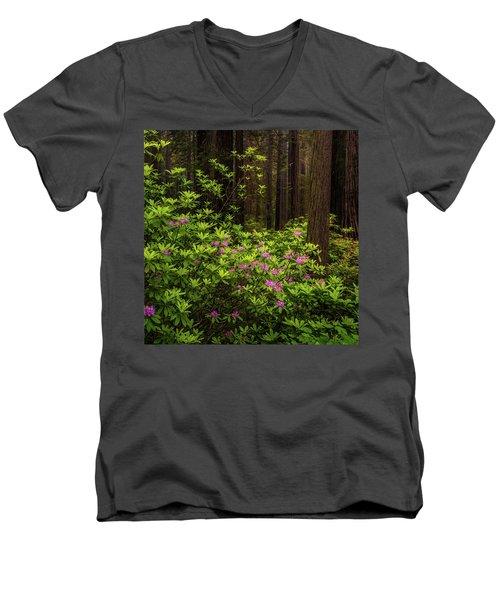 Rhododendrons Men's V-Neck T-Shirt