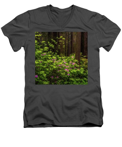 Rhododendrons Men's V-Neck T-Shirt