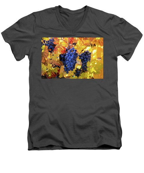 Rich Fall Colors With Grapes Men's V-Neck T-Shirt