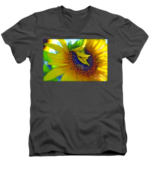 Rich In Pollen Men's V-Neck T-Shirt