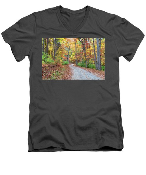 Rich Mountain Road Men's V-Neck T-Shirt