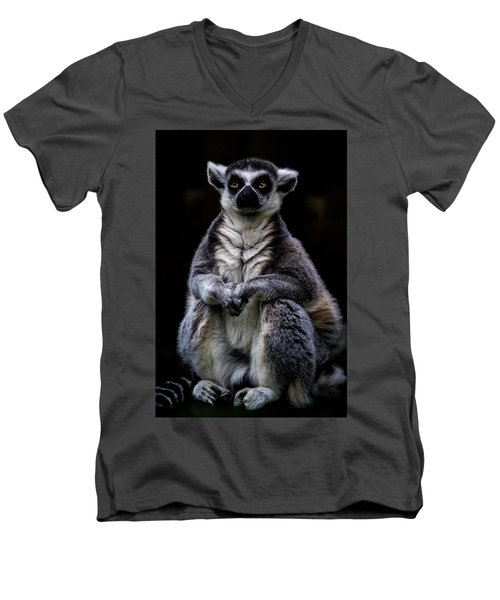 Men's V-Neck T-Shirt featuring the photograph Ring Tailed Lemur by Chris Lord