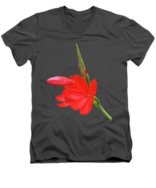 Ritzy Red Men's V-Neck T-Shirt