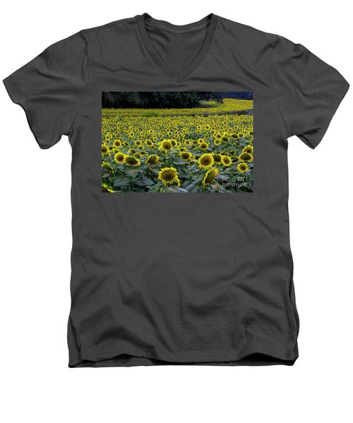 River Of Sunflowers Men's V-Neck T-Shirt by Barbara Bowen