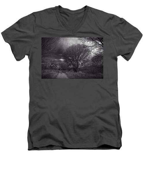 Road Through The Cottonwoods Men's V-Neck T-Shirt