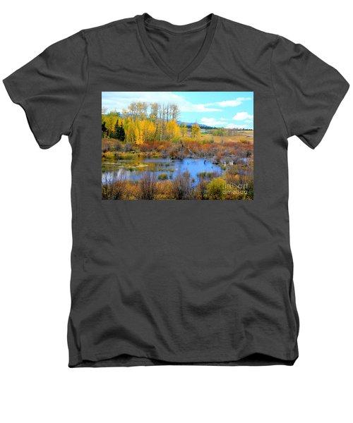 Roadside Splendor Men's V-Neck T-Shirt