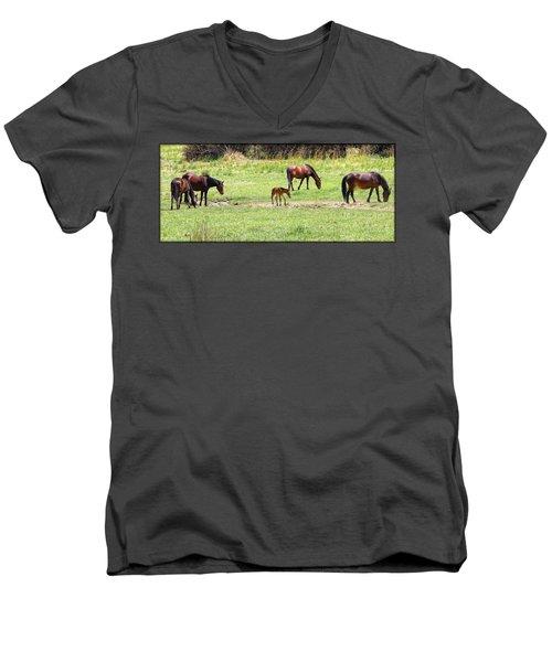 Roaming Freely Men's V-Neck T-Shirt
