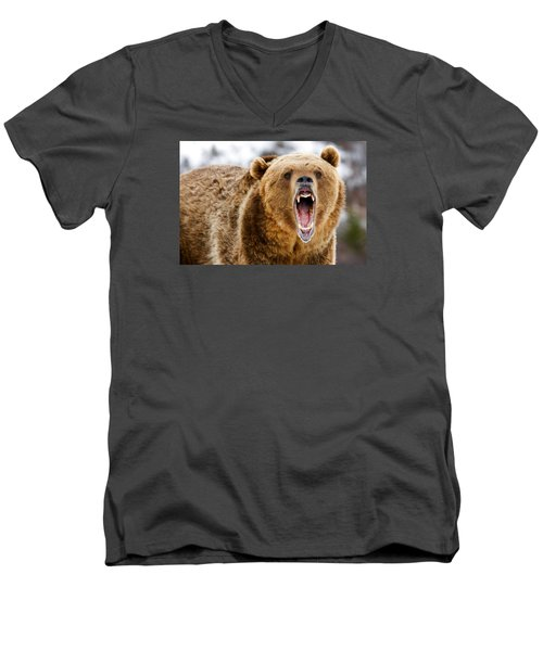 Roaring Grizzly Bear Men's V-Neck T-Shirt