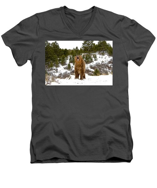 Roaring Grizzly In Winter Men's V-Neck T-Shirt