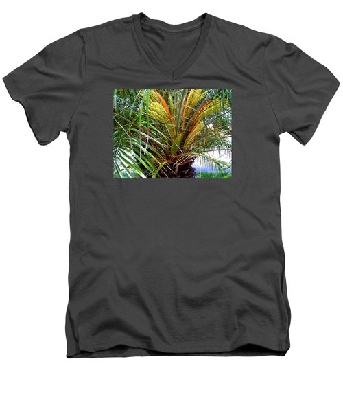 Men's V-Neck T-Shirt featuring the photograph Robillini Palm In Bloom by Merton Allen
