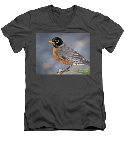 Men's V-Neck T-Shirt featuring the photograph Robin by Douglas Stucky