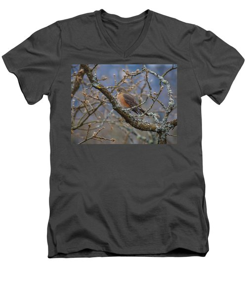 Robin In A Tree Men's V-Neck T-Shirt by Keith Boone