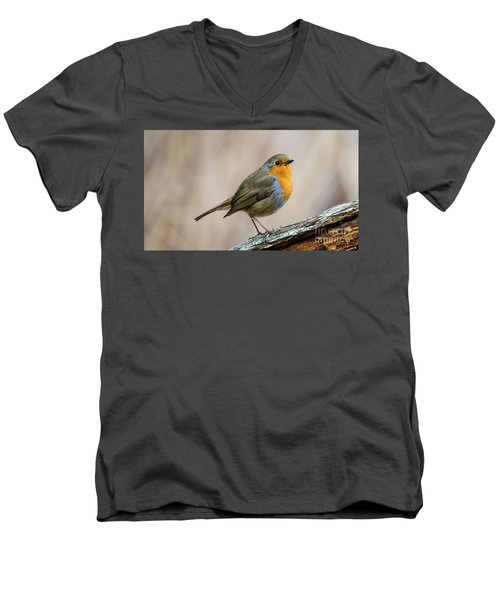 Men's V-Neck T-Shirt featuring the photograph Robin In Spring by Torbjorn Swenelius