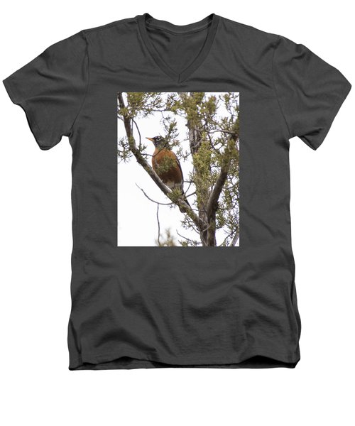 Robin On The Lookout Men's V-Neck T-Shirt by Laura Pratt