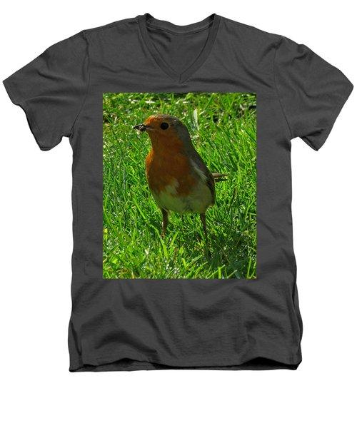 Robin1 Men's V-Neck T-Shirt