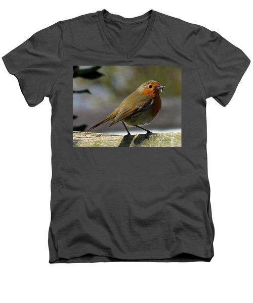 Robin3 Men's V-Neck T-Shirt