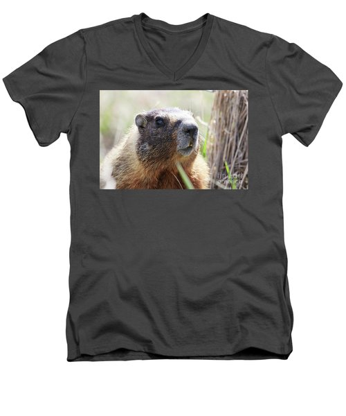 Rock Chuck Men's V-Neck T-Shirt