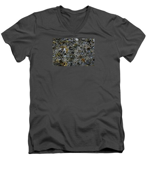 Rock Lichen Surface Men's V-Neck T-Shirt