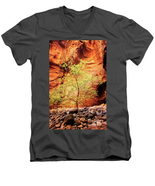 Rock Tree Men's V-Neck T-Shirt