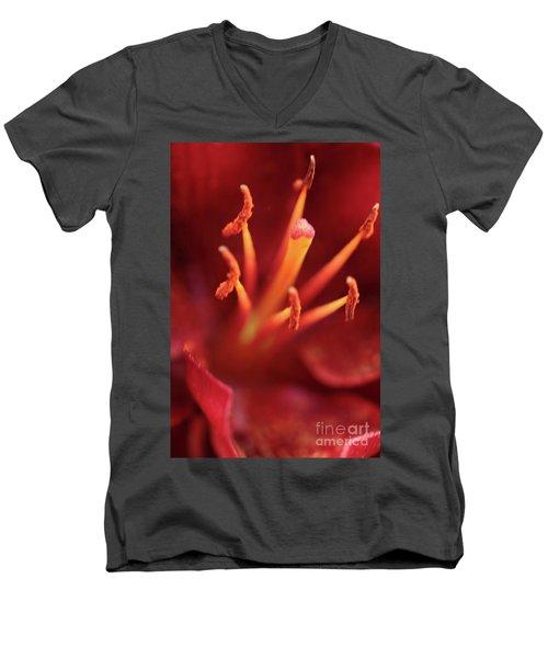 Rocket Lily Men's V-Neck T-Shirt