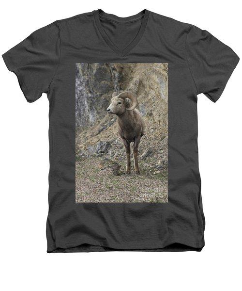 Rockies Big Horn Men's V-Neck T-Shirt
