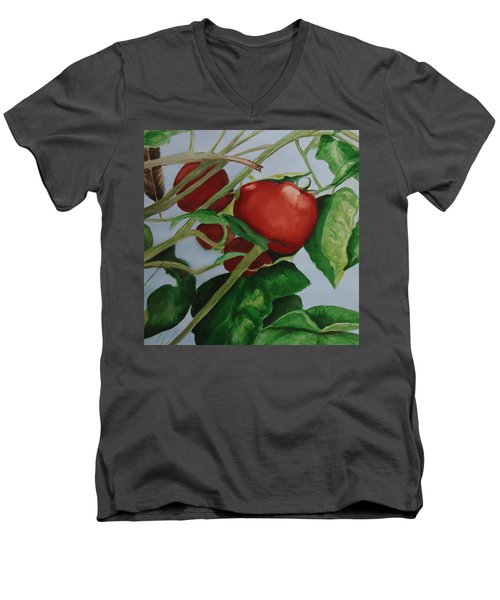 Rockin Robin Men's V-Neck T-Shirt