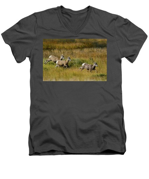 Rocky Mountain Goats 7410 Men's V-Neck T-Shirt