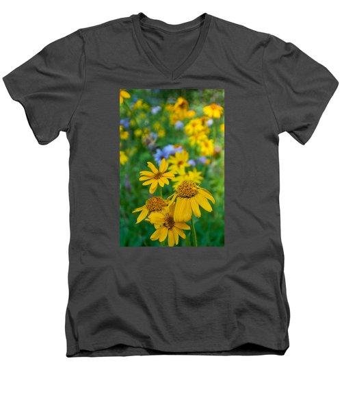 Rocky Mountain Wildflowers Men's V-Neck T-Shirt