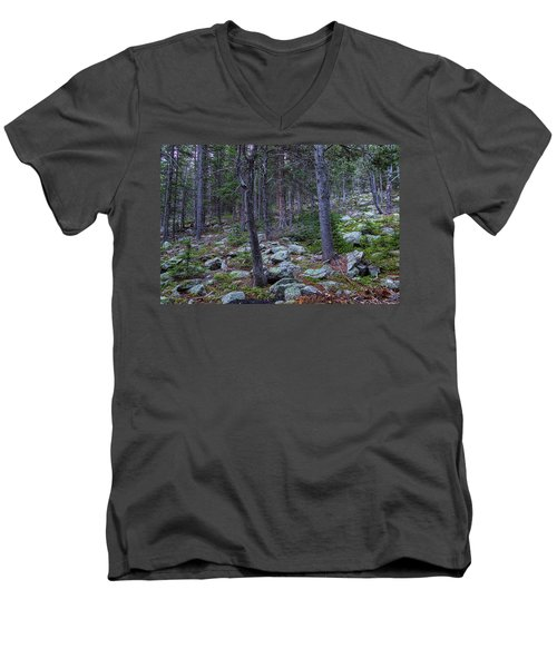 Men's V-Neck T-Shirt featuring the photograph Rocky Nature Landscape by James BO Insogna