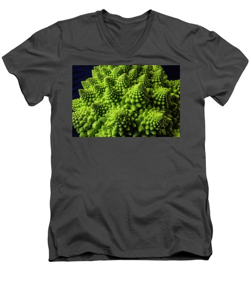 Romanesco Broccoli Men's V-Neck T-Shirt by Garry Gay