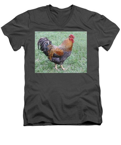 Rooster 2 Men's V-Neck T-Shirt