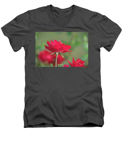 Rose 4 Men's V-Neck T-Shirt
