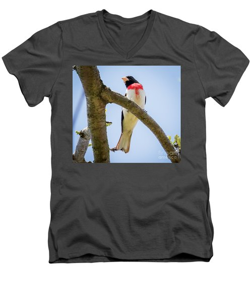 Men's V-Neck T-Shirt featuring the photograph Rose-breasted Grosbeak Looking At You by Ricky L Jones