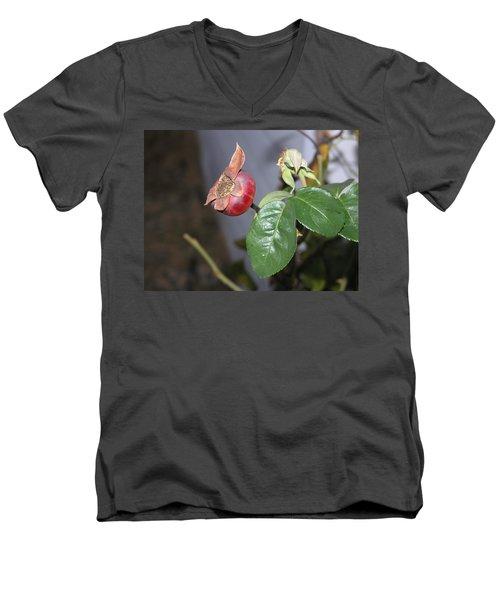 Rose Hip Men's V-Neck T-Shirt