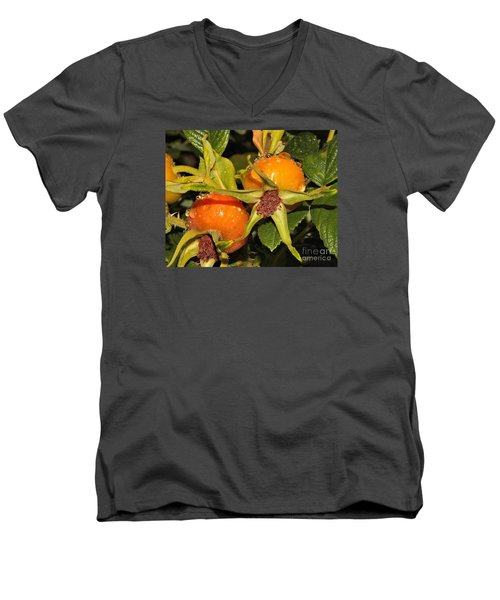 Men's V-Neck T-Shirt featuring the photograph Rose Hips by Debbie Stahre