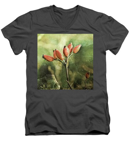 Rose Hips Men's V-Neck T-Shirt