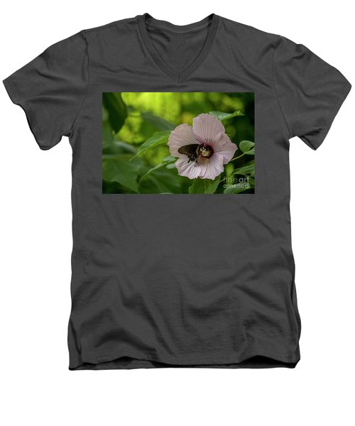Rose Mallow Men's V-Neck T-Shirt