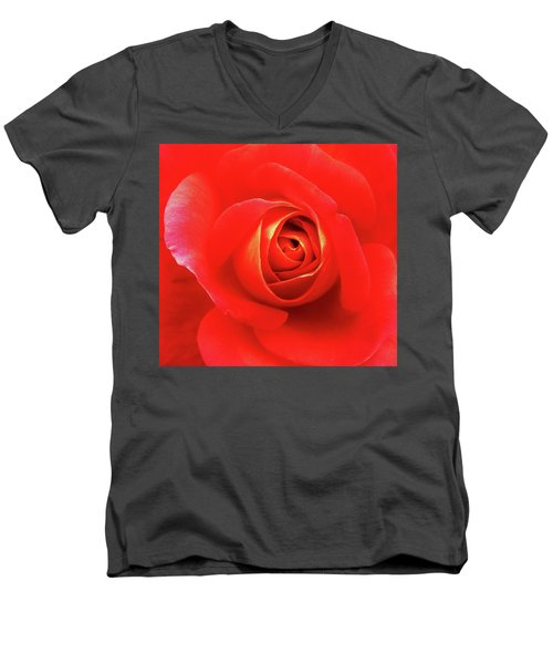 Rose Men's V-Neck T-Shirt by Mary Ellen Frazee