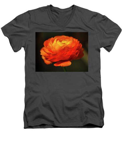 Rose Of Spring Men's V-Neck T-Shirt