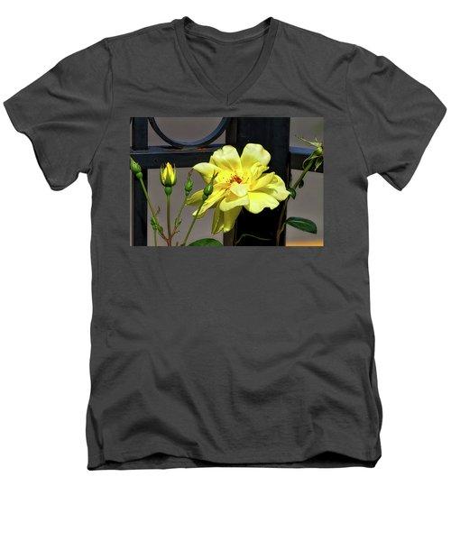 Rose On Wrought Iron Men's V-Neck T-Shirt