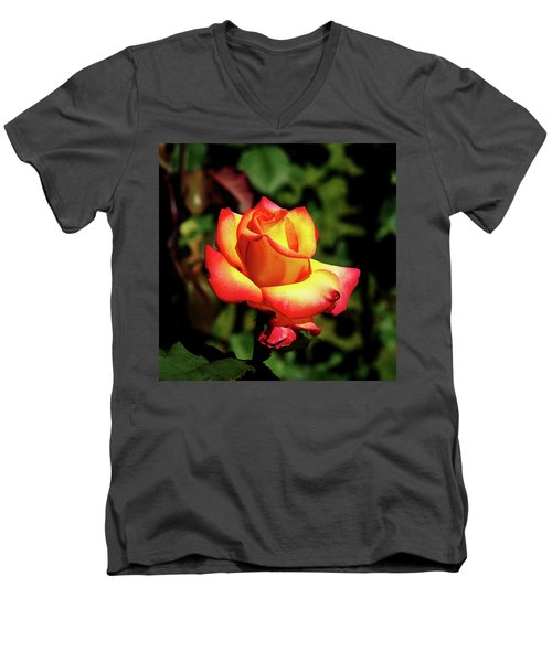 Men's V-Neck T-Shirt featuring the photograph Rose To Remember by Dale Stillman