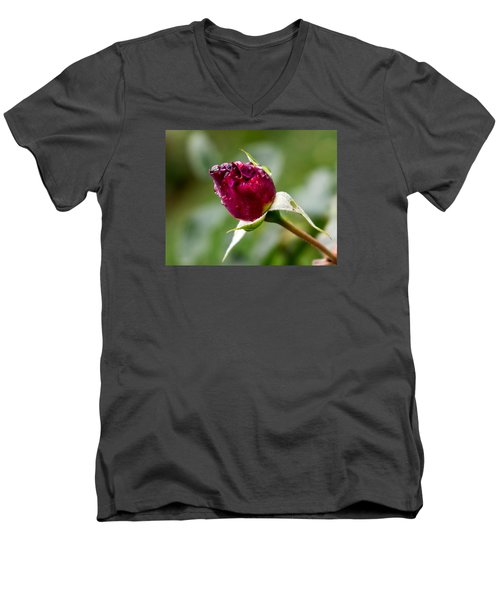 Rosebud Men's V-Neck T-Shirt by Cathy Donohoue