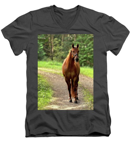 Rosey On The Road Men's V-Neck T-Shirt by Michelle Twohig