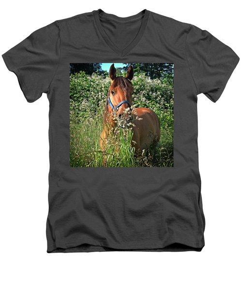 Rosey's Heaven Men's V-Neck T-Shirt by Michelle Twohig