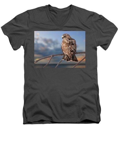Rough Legged Hawk Men's V-Neck T-Shirt